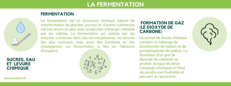 Explication de la fermentation par Amasco